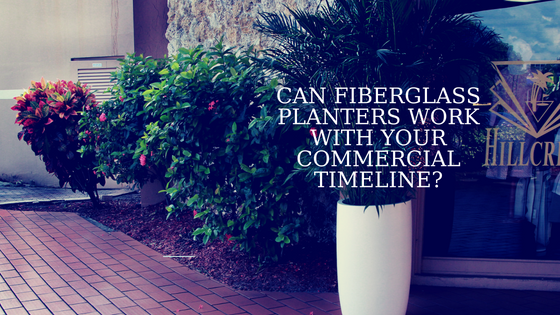 CAN FIBERGLASS PLANTERS WORK WITH YOUR COMMERCIAL TIMELINE