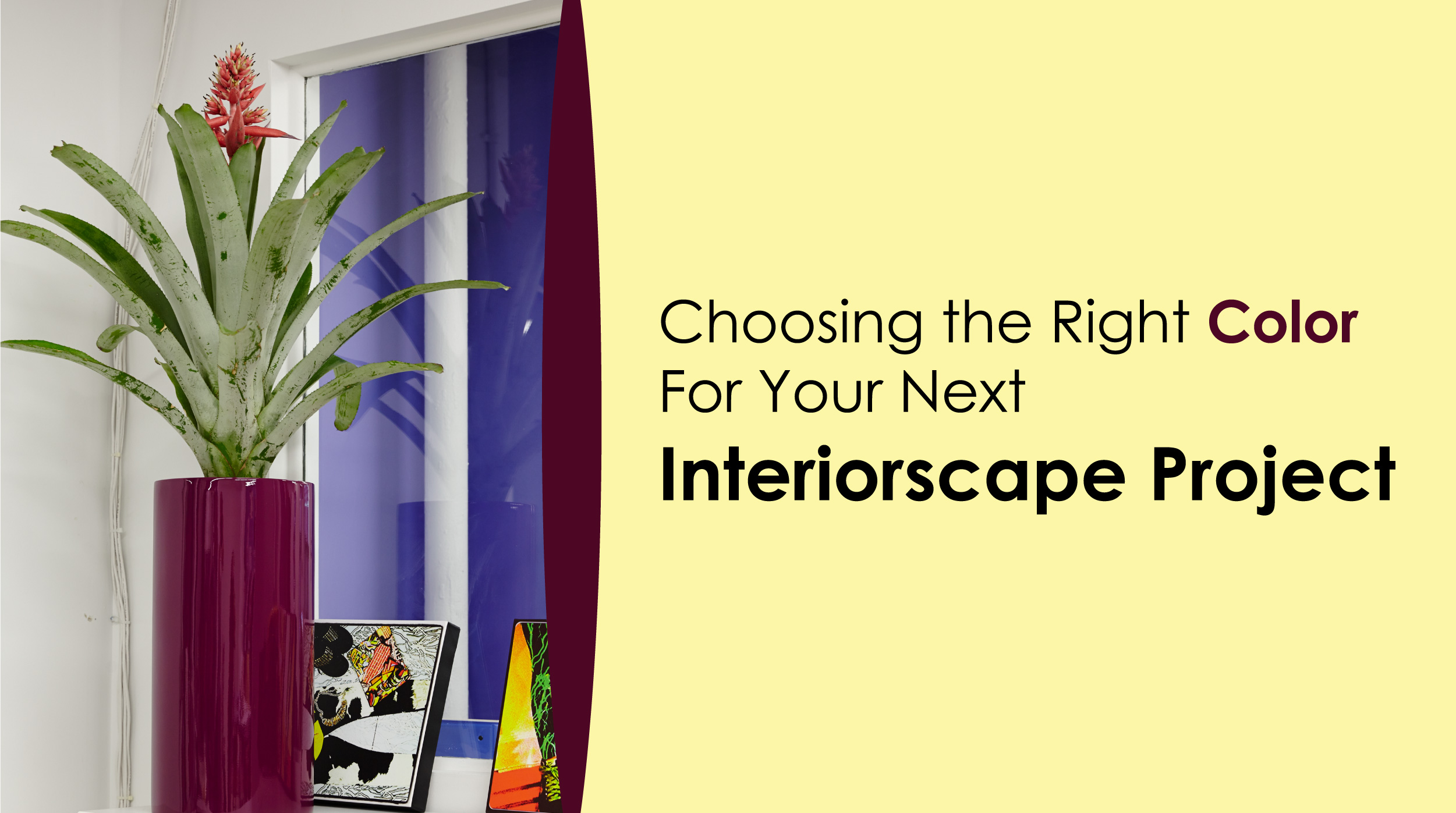 Choosing the Right Color for Your Interiorscape Project