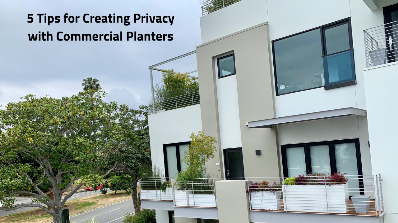 Creating Privacy with Commercial Planters