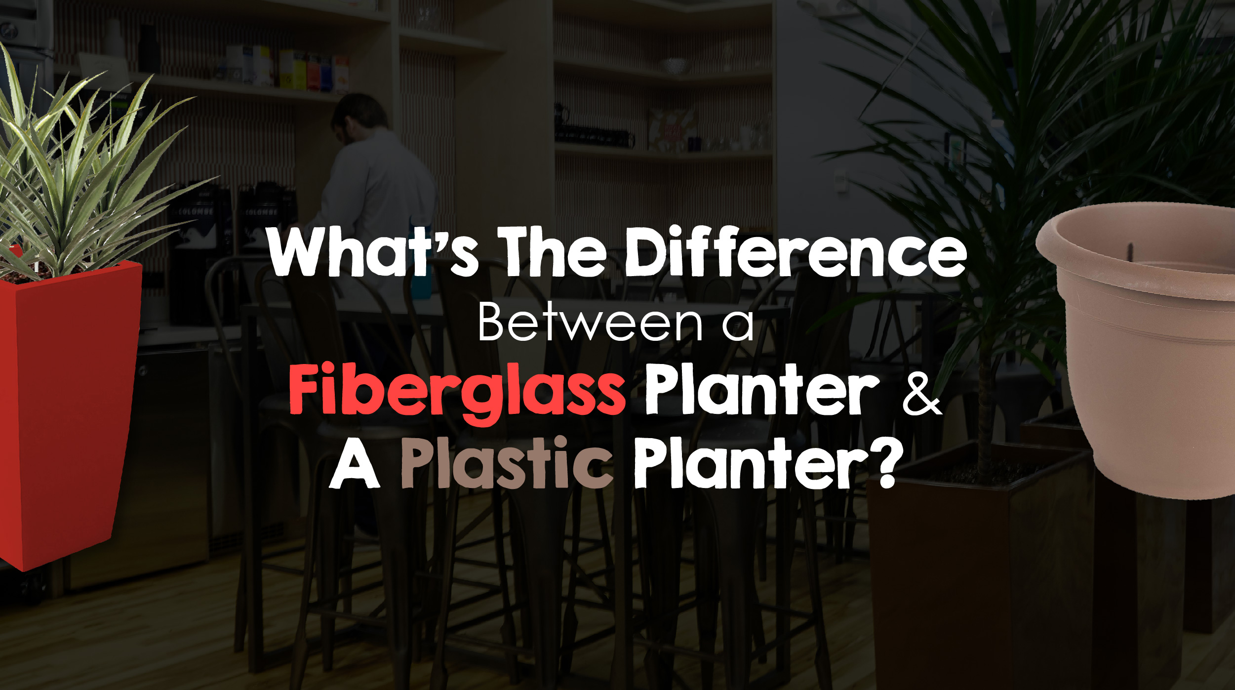 Fiberglass Planters Vs. Plastic Planters