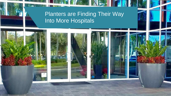 Planters are Finding Their Way Into More Hospitals