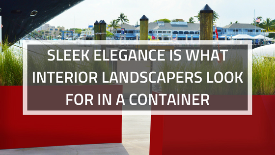 SLEEK ELEGANCE IS WHAT INTERIOR LANDSCAPERS LOOK FOR IN A CONTAINER