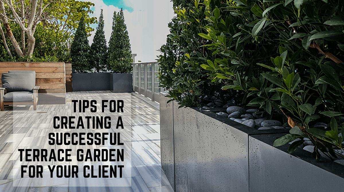 Tips for creating a successful terrace garden for your client