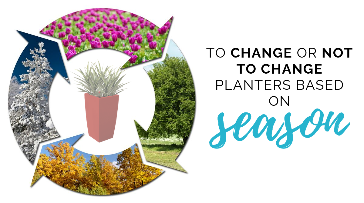 TO CHANGE OR NOT TO CHANGE PLANTERS BASED ON SEASON (1)