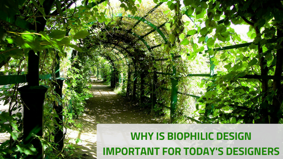 WHY IS BIOPHILIC DESIGN IMPORTANT FOR TODAY'S DESIGNERS