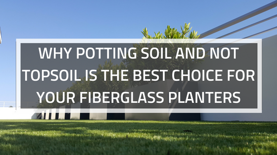 WHY POTTING SOIL AND NOT TOPSOIL IS THE BEST CHOICE FOR YOUR FIBERGLASS PLANTERS