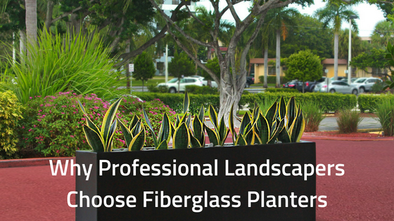 WHY PROFESSIONAL LANDSCAPERS CHOOSE FIBERGLASS PLANTERS