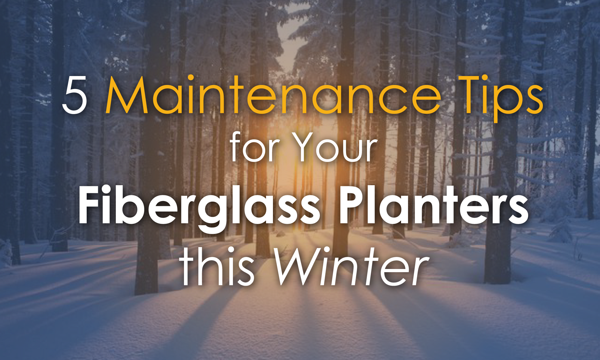 WinterMaintenance-BlogGraphic-01
