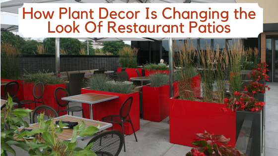 How plan decor is changing the look of restaurant