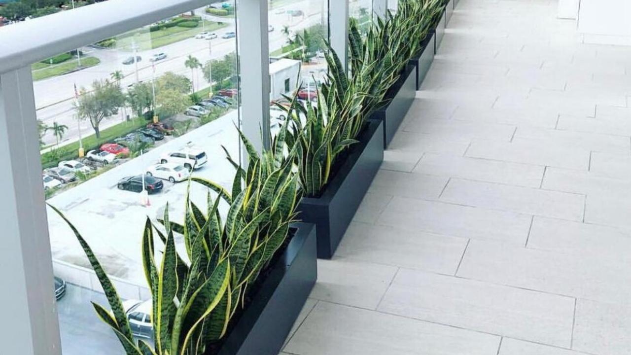 small fiberglass planter by The Plantguy