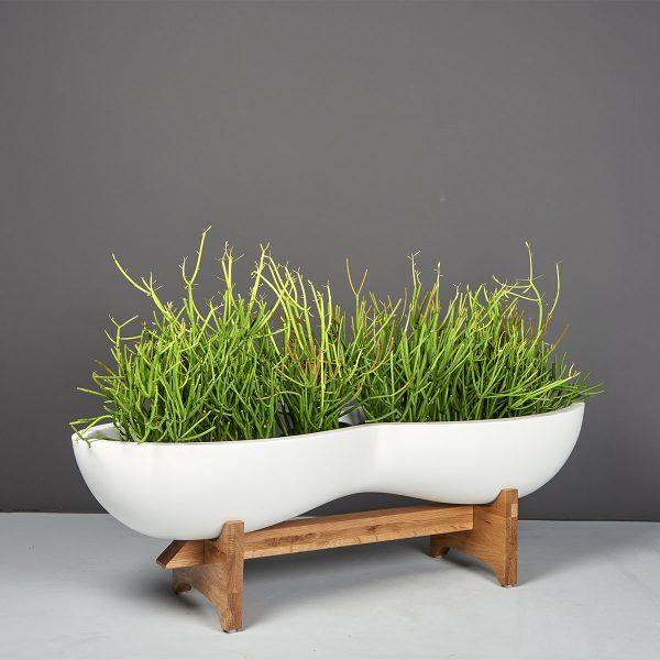 Timbrell Modern Planter