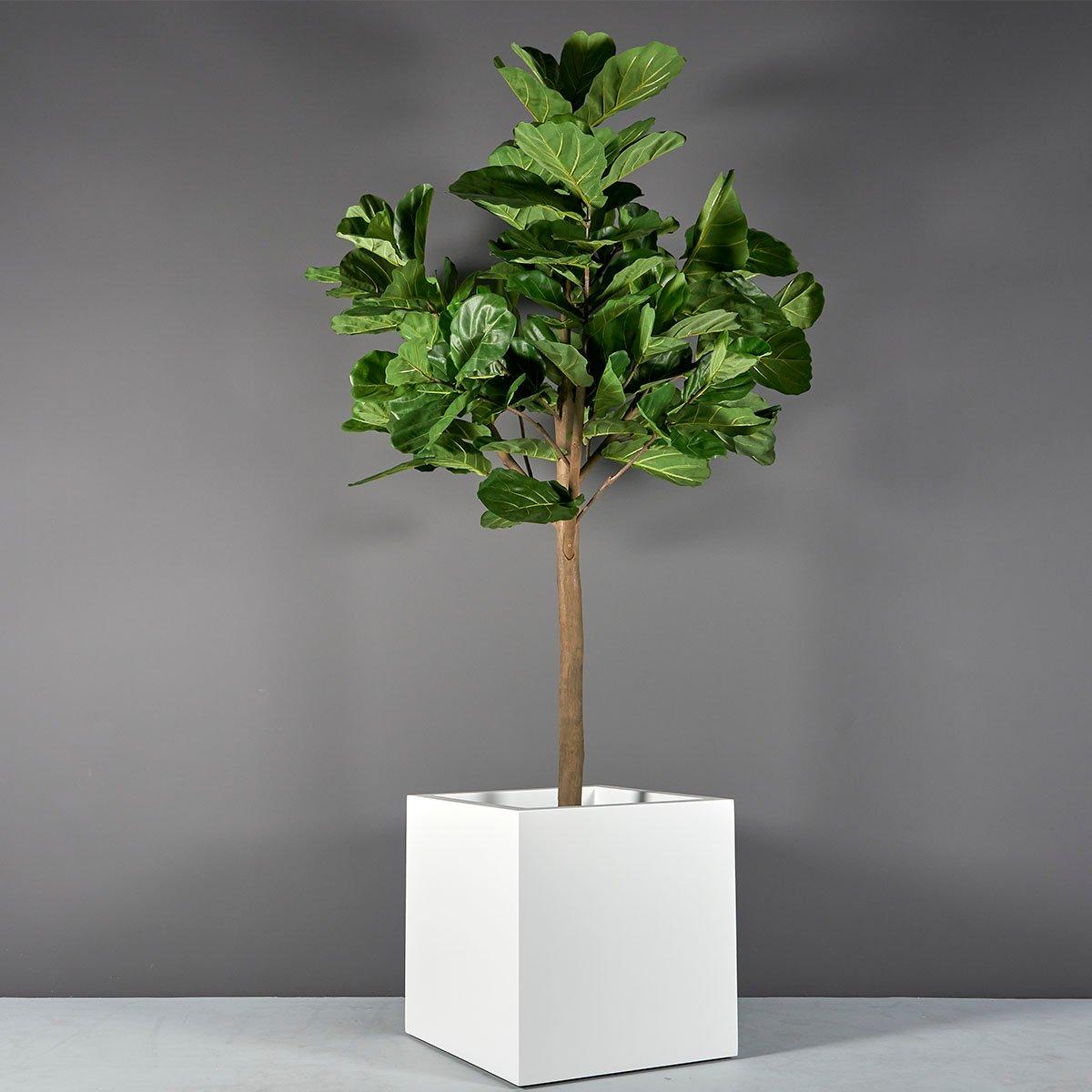 Montroy Cube Planter