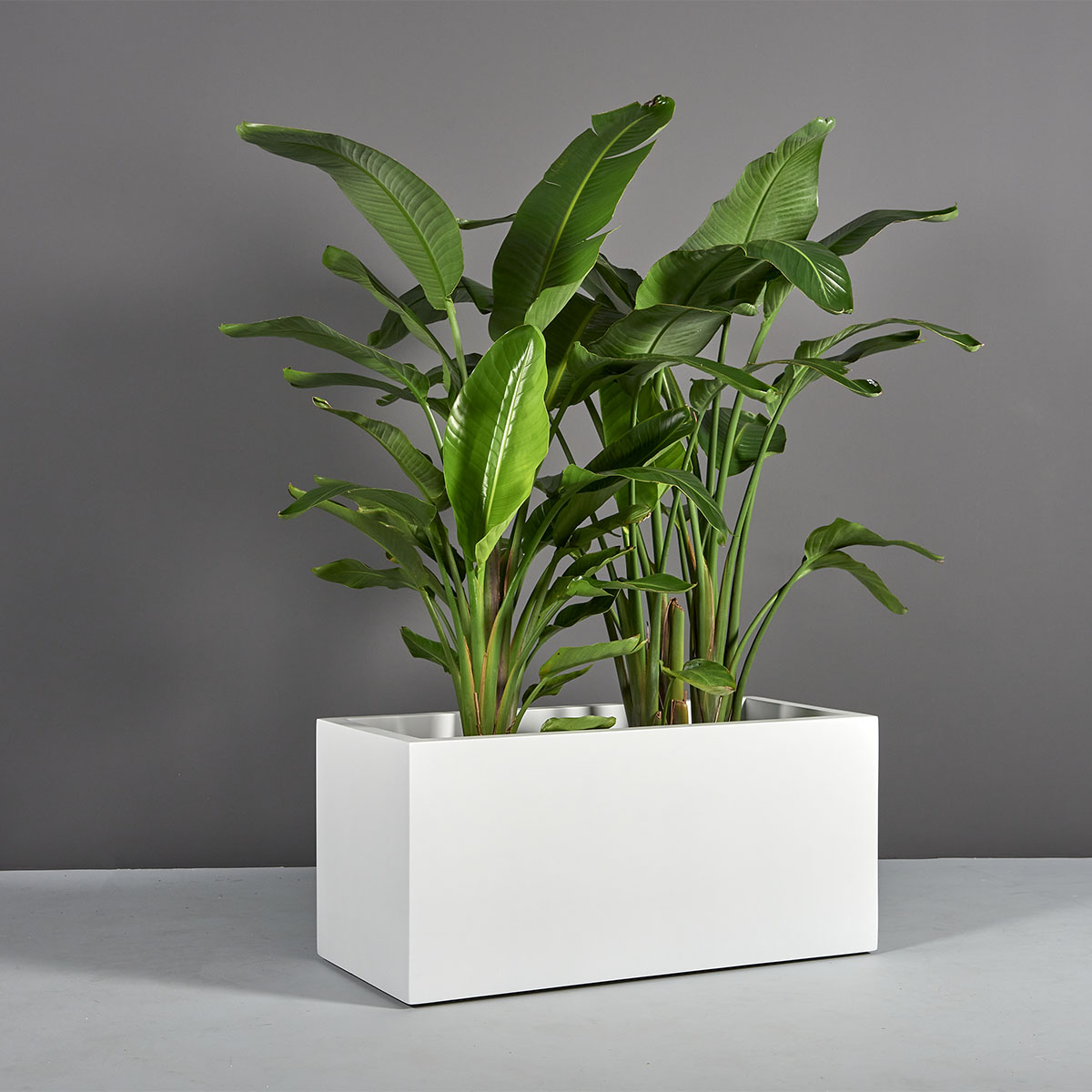 Badalona Rectangular Planter