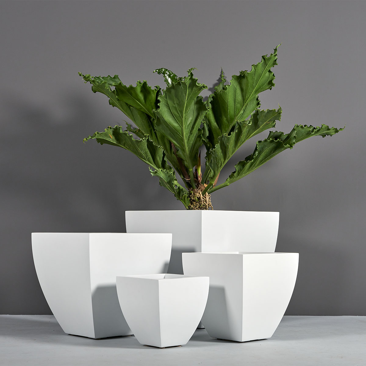 Lima Square Tapered Planter