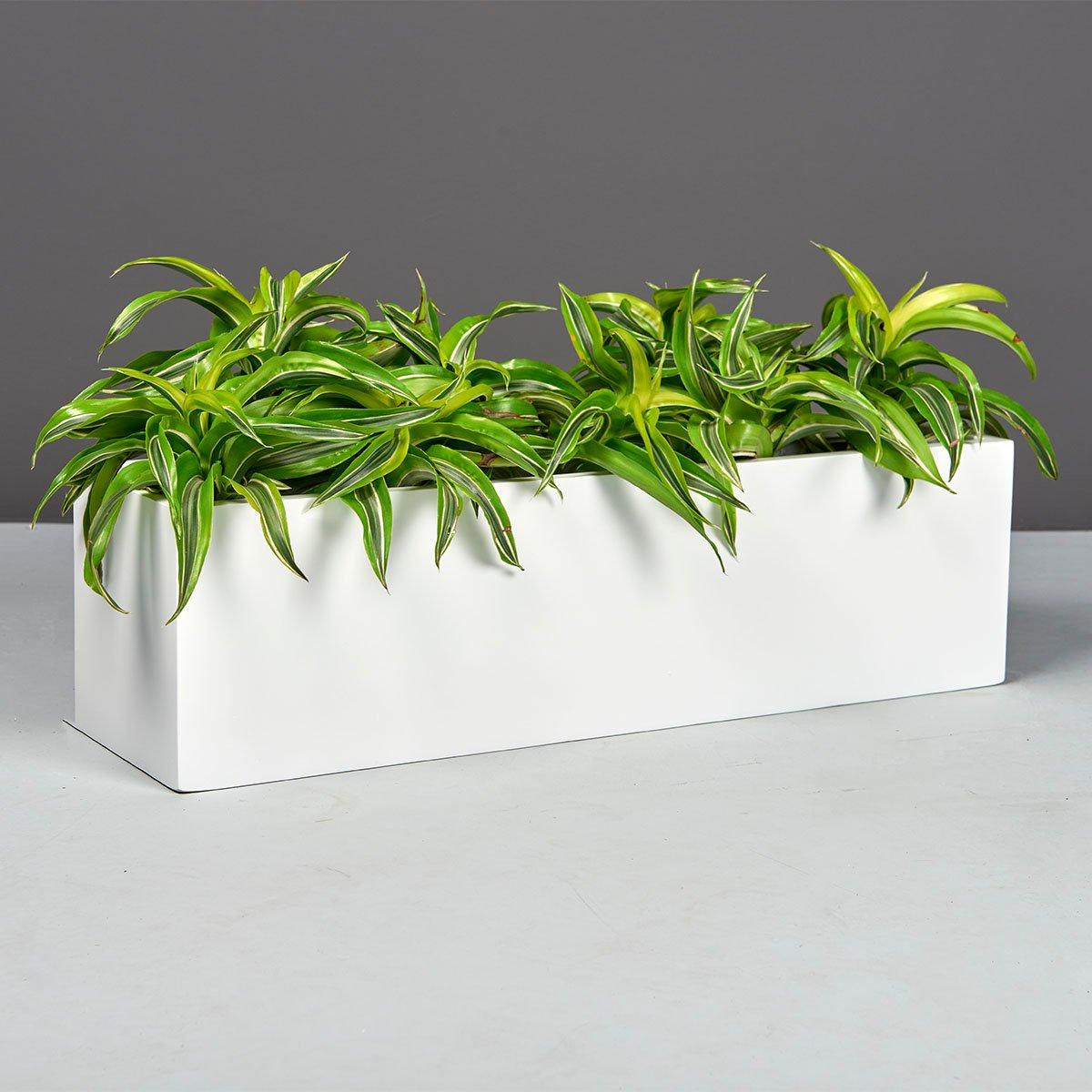 Weir Rectangle Tabletop Planter