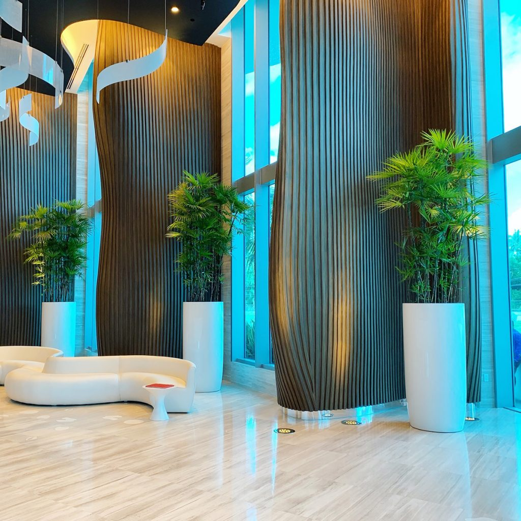 Congress Tall Extra Planters as commercial planters for privacy