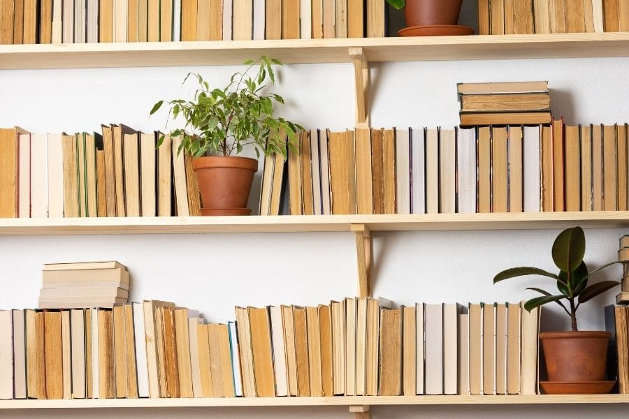 Plants in bookcases