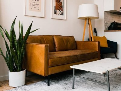 Room Decor with Plants: 6 Common Mistakes – And How to Avoid Them!