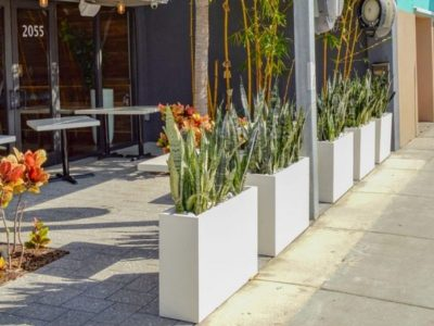 Best Fiberglass Planters: 8 Key Factors to Help You Choose the Right Pot for Your Next Project