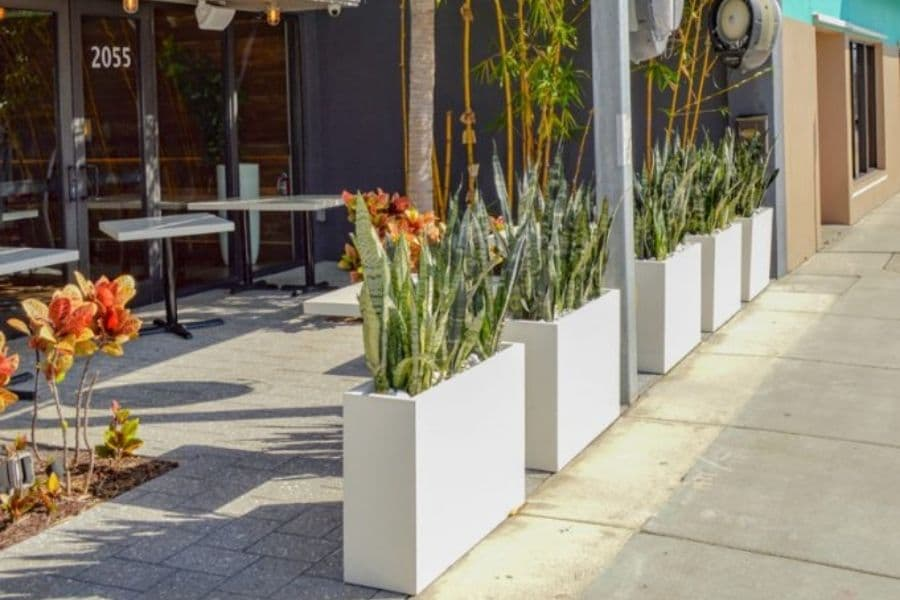 how to choose best fiberglass planters