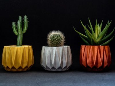 Choosing the Right Colors for Your Planters: Key Things to Know & Most Popular Color Schemes