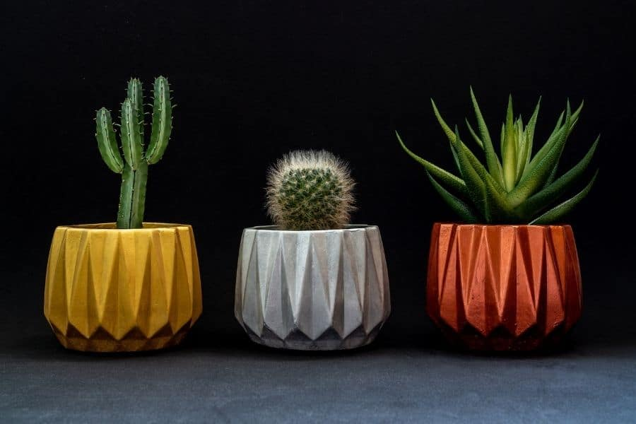 Choose right color for planters