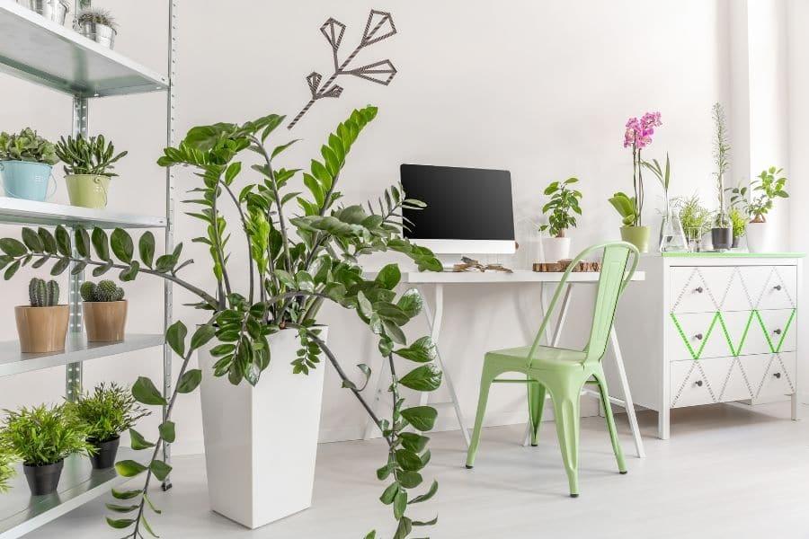 how to arrange plant pots