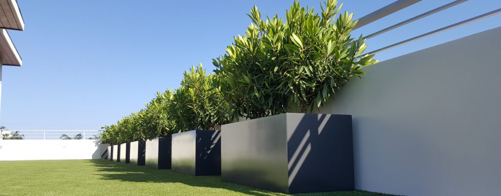jay scotts square planters in a row