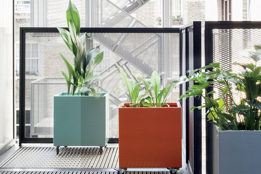 interior decorating trends mobility planters