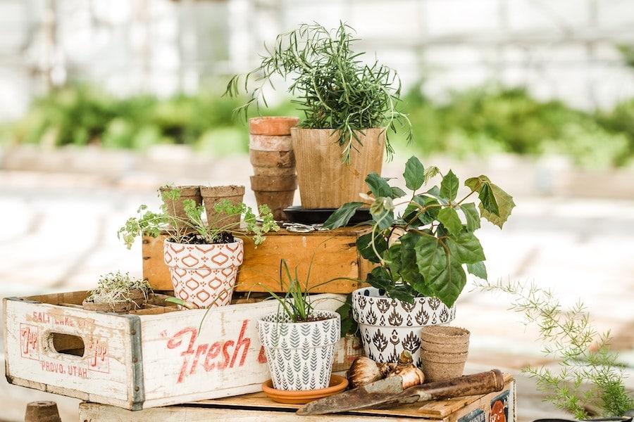 Plant pots materials