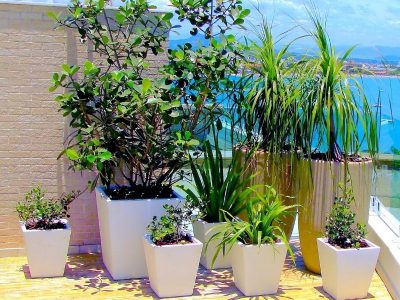 The Benefits of Different Planter Shapes