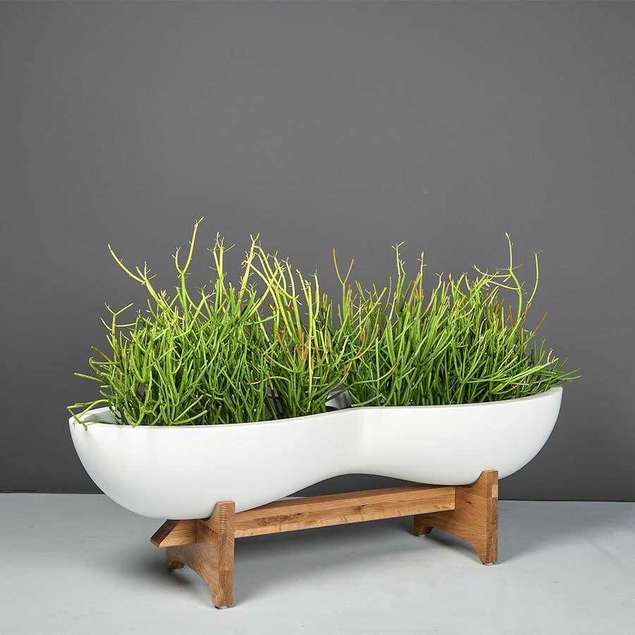 A plant holder product from Jay Scotts