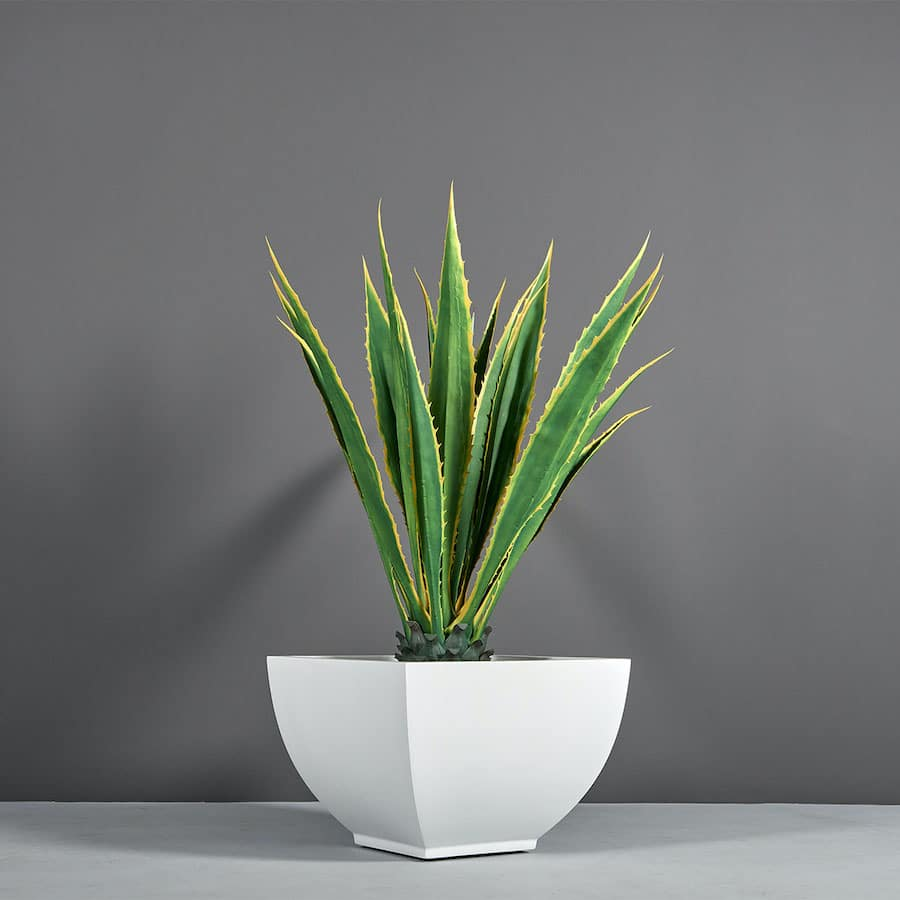 Tapered planter from Jay Scotts