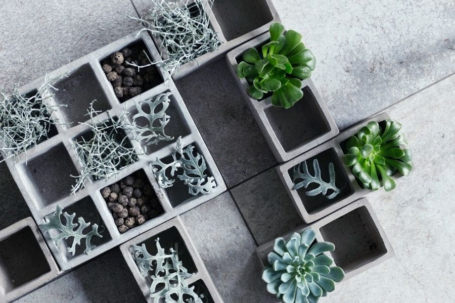 Modern composition with cubical concrete planters and succulents.