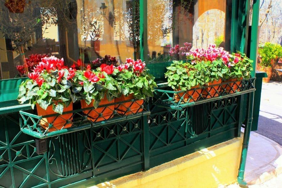 Decorative flower planter on a garden's fence.