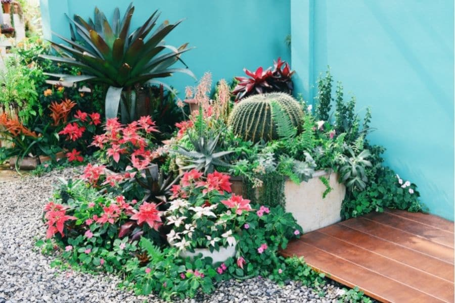 Home Garden and Landscaping