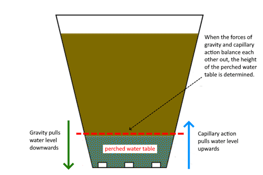 The Perched Water Table planter