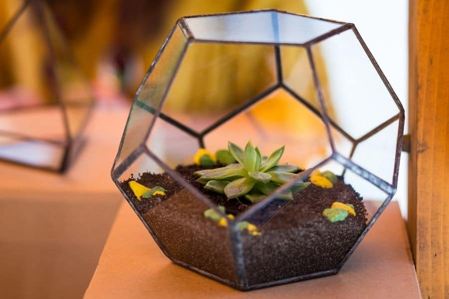 Glass flower pots made from recycled glass
