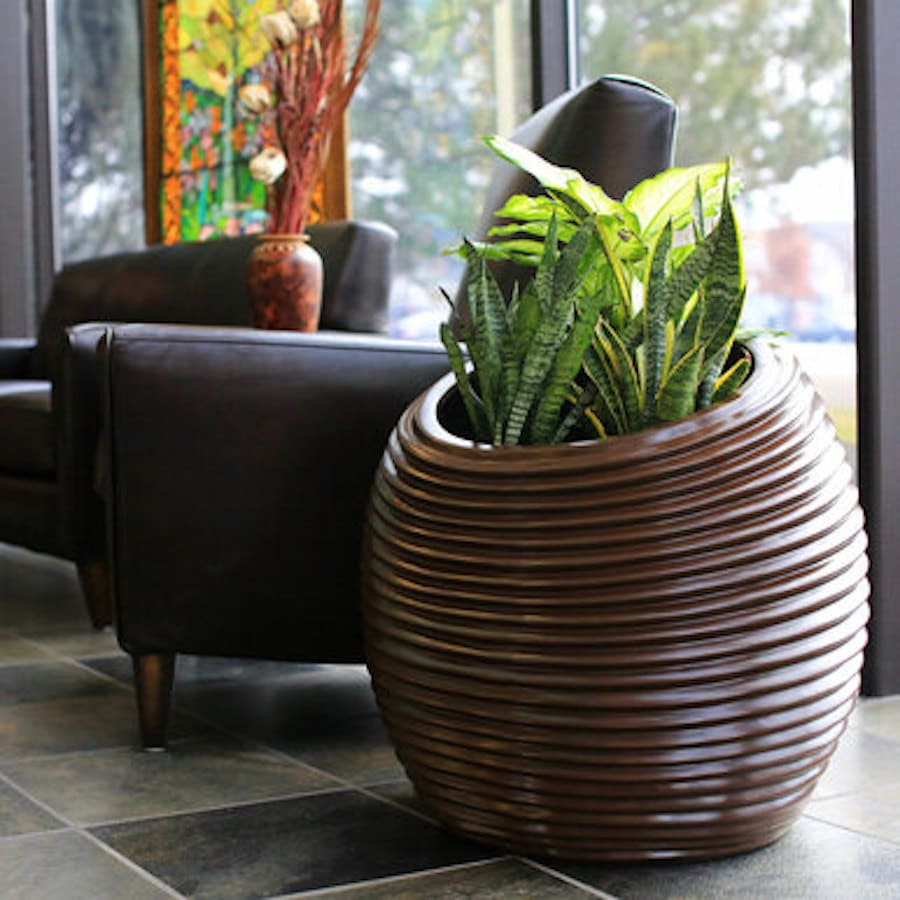 Spiral Distinctive Organic Planter from jay Scotts