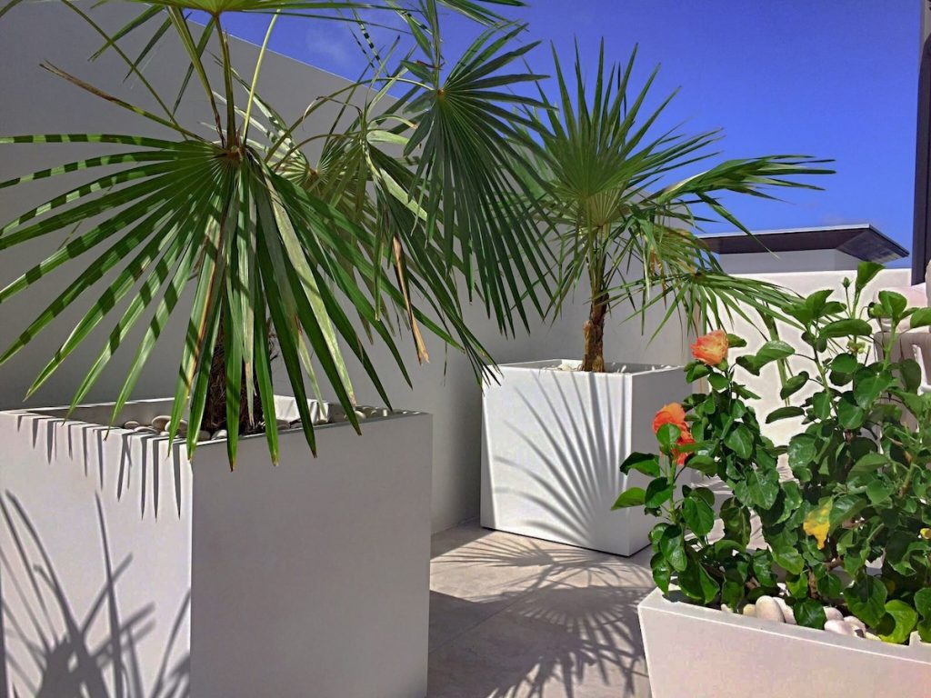 Montroy extra large planter
