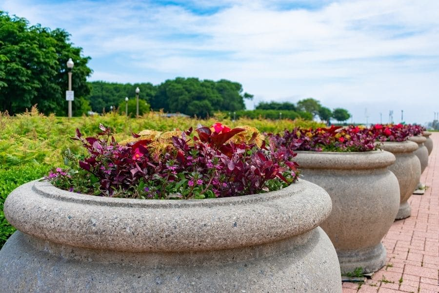 large planters in Grant Park Chicago